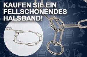 Fordogtrainers Stachelhalsband
