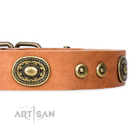 "Neues FDT Artisan Lederhalsband Tan ""Dandy Pet"""