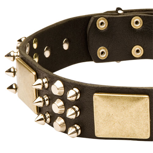 best spiked dog collar for mastiffs