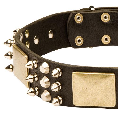 staffordshire bullterrier halsband mit spikes pyramiden. Black Bedroom Furniture Sets. Home Design Ideas