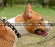hundehalsband leder breit hunde halsband und sprenger. Black Bedroom Furniture Sets. Home Design Ideas