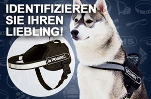 Hundegeschirr mit reflektierender Streife