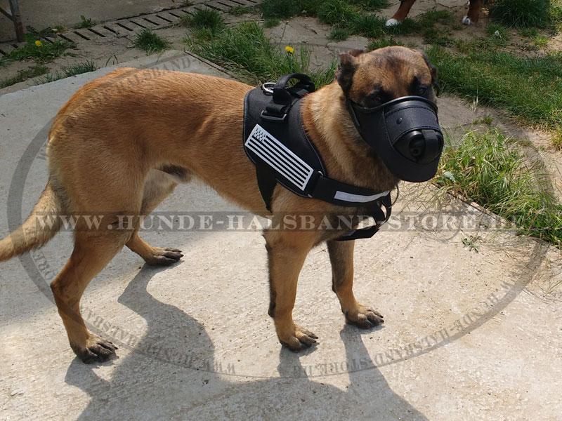Maulkorb aus Leder undNylon für Diensthunde