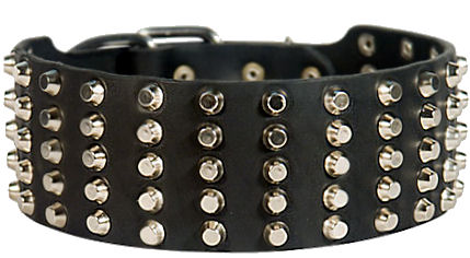 Black Leather Collar With Spikes Studs For A Dog