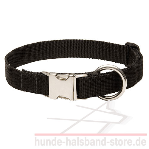 /images/large/Nylon-collar-new_LRG.jpg