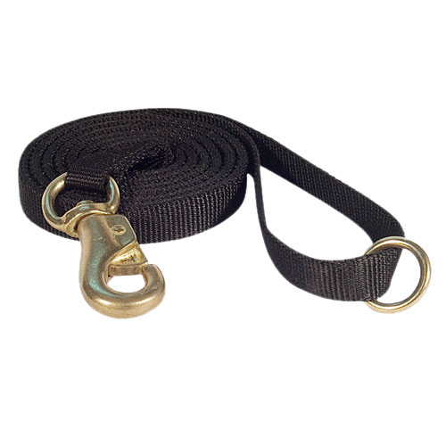 /images/large/Nylon-dog-lead-DE_LRG.jpg