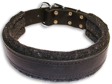 Plain Leather Dog Collars