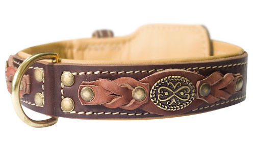 Designer Leather Dog Collars Uk