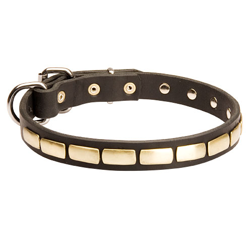 /images/large/S25P-leather-dog-collar_LRG.jpg