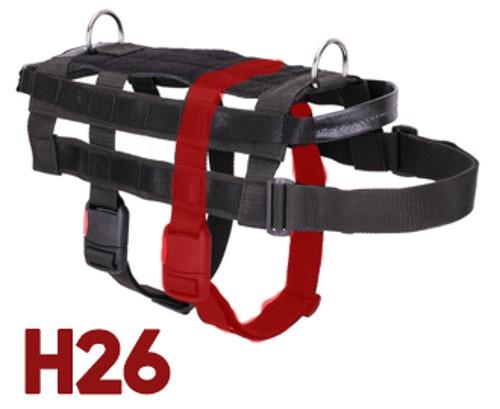 H26 messen Sie den Hund ab